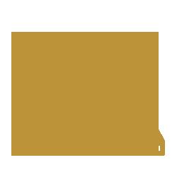 Pioneros en tecnología dental